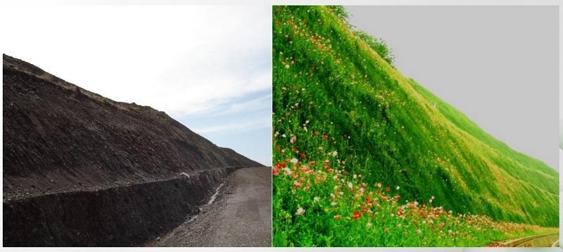 福永高速绿化效果图