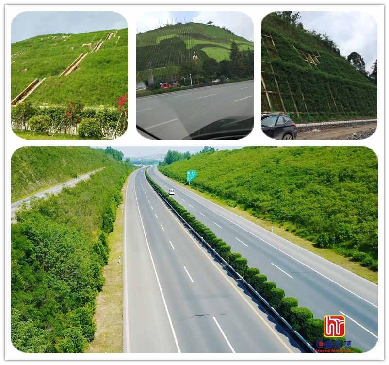 高速公路、铁路边坡绿化_副本