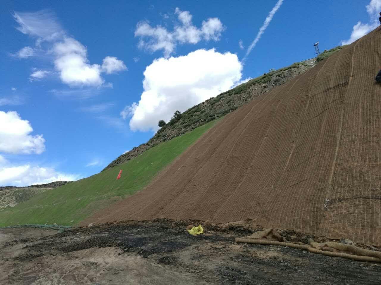 植被毯边坡绿化